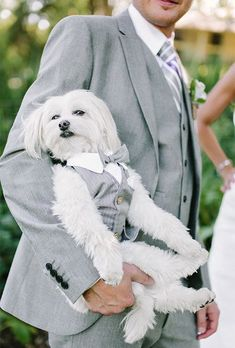 12 Adorable Ways to Include Your Dog in Your Wedding Matching Couple Outfits, Wedding Suits, Blue Wedding, Fall Wedding, Wedding Groom, Wedding Engagement, Wedding Flowers, Puppy Love, Real Weddings