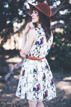 Bird print dress, ModCloth / Finch & Fawn
