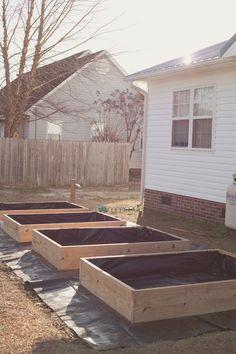 Raised Garden Beds   Barefoot Homesteader