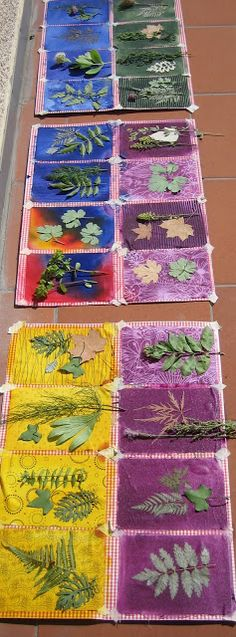Nature prints on fabric using fabric paint in spray bottle to cover fabric, then place green leaves immediately on top and leave in the sun.