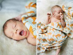 beautiful newborn Newborn Session: Isla {Raleigh Newborn Photographer} anna paschal photography