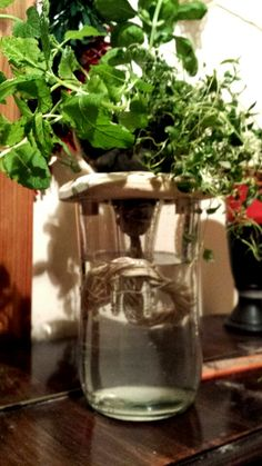 Large subirrigated bottle planter with wooden detail.