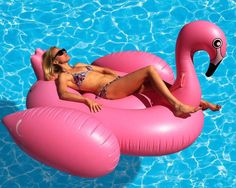 Attack Of The Giant Pink Flamingo ... see more at PetsLady.com ... The FUN site for Animal Lovers