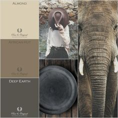 Colors and atmosphere from Africa. #moodboard made by Anke Mosselman. Colors by www.pure-original.com