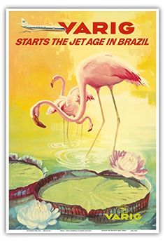 Brazil - Varig starts the Jet Age in Brazil - Pink Flamingos (Flamingo Rosados) wade in a Lily Pond - Variq Airlines - Vintage Airline Travel Poster c.1970 - Master Art Print - 13in x 19in Pacifica Island Art http://www.amazon.co.uk/dp/B00M3EV3SO/ref=cm_sw_r_pi_dp_HfHIub1YHZ37D