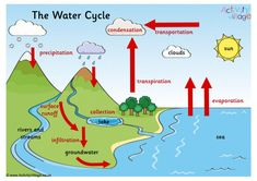 Water Cycle Process, Water Cycle Poster, Water Cycle Diagram, States Of Matter Worksheet, Activity Village, Posters Uk, Geography Lessons, English Worksheets For Kids, Astronomy