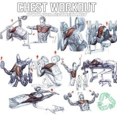 Chest Workout - Healthy Fitness Exercises Gym Bench Press - Yeah We Train !