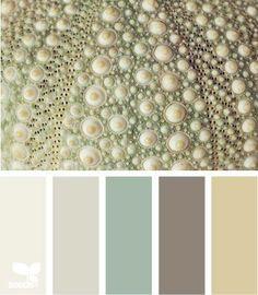 Color/ Design