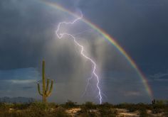 "Lucky Strike: ""I stopped in Marana to photograph this beautiful rainbow and the lightning bolt came . - Greg McCown/ 2016 National Geographic Nature Photographer of the Year All Nature, Amazing Nature, Images Cools, Fuerza Natural, Lightning Photos, Cool Pictures, Cool Photos, Concours Photo, Lightning Strikes"
