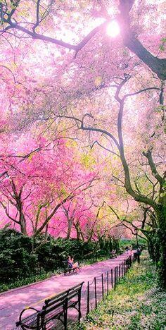 O Conservatory Garden no Central Park na cidade de Nova York, NY, USA.