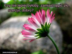 Dobro | www.MotywujSie.pl