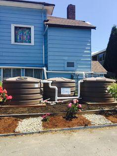 3 X 420 Gallon Tanks In West Seattle. Overflow To Sidewalk Dispersion  Trenches. #rainwaterharvesting | Rain Water Harvesting (RWH) | Pinterest |  West ...