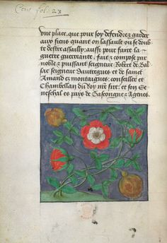 The Tudor rose entwined with the pomegranate motif of Katherine of Aragon
