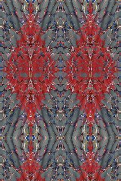 Ex Libris Velvet, 100% cotton, Brick red on charcoal / Timorous Beasties