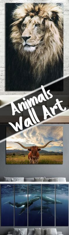 Large Animals & Wildlife Wall Art for Home & Office decoration.