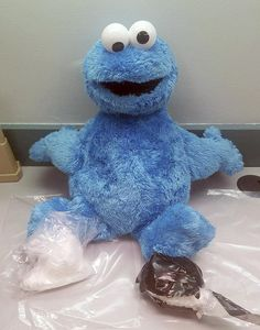 MARATHON — A stash of cocaine hidden inside a Cookie Monster doll has landed a Florida man in jail on a drug charge.The Monroe County Sheriff's