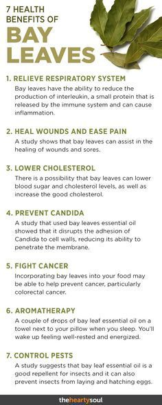 It's Called the Blessing of the Gods: Reduce Anxiety, Lower High Blood Sugar, Help Fight Cancer - Bay leaves… you can cook them, burn them, and more! Here are the 5 best ways to get the bay leaf - Bay Leaf Benefits, Lemon Benefits, Health Benefits, Herbal Remedies, Health Remedies, Natural Remedies, Burning Bay Leaves, Brunch, Natural Antibiotics