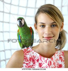 Scene 2 - how parrot would look on shoulder (except he's an African grey)