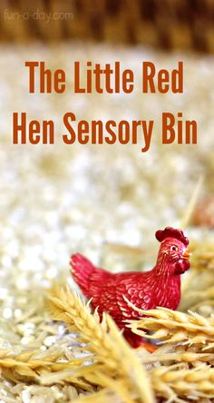 Sensory play for kids to explore story of The Little Red Hen! So much learning in one spot! Little Red Hen Activities, Farm Activities, Preschool Literacy, Preschool Books, Toddler Activities, Spring Activities, Educational Activities, Kindergarten, Sensory Boxes