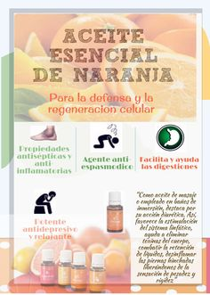 Aceite Esencial de Naranja (Español) - Propiedades - Young Living My Essential Oils, Young Living Essential Oils, Essential Oil Blends, Shakira Young, Yl Oils, Young Living Oils, Fb Page, Natural Life, Aromatherapy