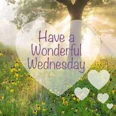 Have A Wonderful Wednesday good morning wednesday happy wednesday good morning wednesday wednesday image quotes wednesday quotes and sayings Wednesday Greetings, Wednesday Hump Day, Wednesday Memes, Good Morning Wednesday, Wonderful Wednesday, Good Morning Good Night, Good Morning Images, Good Morning Quotes, Wednesday Coffee