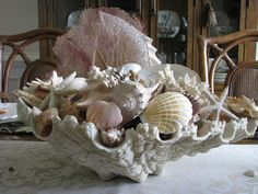 designs by Pinky  ~  decorating with shells