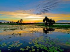 Yellow Waters Kakadu National Park Northern Territory Australia this place is spectacular for photograghy