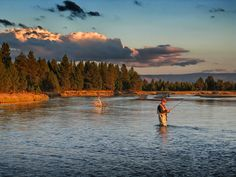 Fly fishing in Big Sky Country, Madison River, Montana.