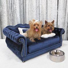 Haute House Home | Haute Dogs | Gigi Navy Dog Bed