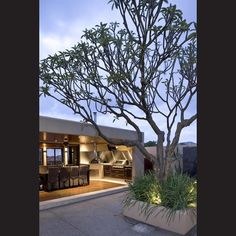 Professional outcome – Dream kitchen through Westpac Financial Services, an article at myTrends. Outdoor Rooms, Outdoor Gardens, Outdoor Living, Tropical Landscaping, Backyard Landscaping, Tropical Gardens, Landscaping Ideas, Landscape Concept, Contemporary Landscape