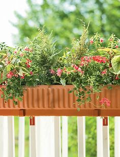 @Lauren Kaufman Self-Watering Windowbox. These fit right on the railings and come in many colors including white.