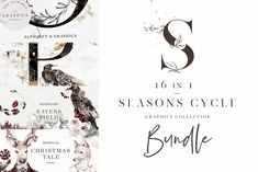 Seasons Cycle. 16 in