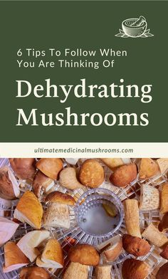 For mushroom lovers, here's some great news: you can dehydrate your favorite varieties and stock up on them especially when they are off-season. Here are 6 excellent tips when you're thinking of dehydrating mushrooms and get started with preserving your very own dehydrated mushroom supply. | Discover more about medicinal mushrooms at ultimatemedicinalmushrooms.com #dryingmushroomsforprofit #preservingmushrooms #medicinalmushroom How To Cook Mushrooms, Dried Mushrooms, Sauteed Mushrooms, Mushroom Gravy, Mushroom Risotto, Glass Storage Containers, Large Mushroom, Mushroom Hunting