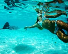 Under the sea Beach Bum, Ocean Beach, Summer Beach, Summer Vibes, Photography Beach, Underwater Photography, Beach Bodys, Life Hacks, Babe