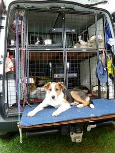 A great van setup! Leashes easily accessible, and a fold-down platform for getting everyone in/out easier.