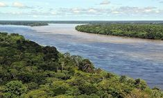 The meeting waters of Brazil - beautiful places to visit in South America 7 Natural Wonders, Areas Protegidas, Xingu, Amazon River, Amazon Rainforest, Rainforest Habitat, Great Barrier Reef, Beautiful Places To Visit, Amazing Destinations