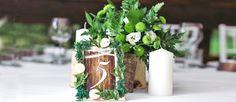 Greenery wedding decor is easy way to add nature and style to your reception. Greenery is a wonderful alternative to florals, that will give a lush look.
