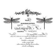 coutures florilege stamp - Cerca con Google