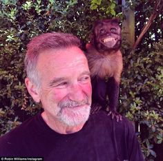 Robin Williams, pictured days before his death with monkey Crystal, was thin and drawn in ...