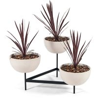 Case Study 3 Bowl Plant Stand - Small
