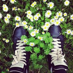 #Fromwhereistand: #May #flowers.