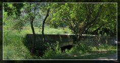 LES ALPILLES... au pied des collines... http://mistoulinetmistouline.eklablog.com/