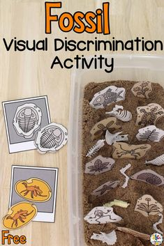 Calling all future paleontologists!  The history museum is looking for more fossils to add to their collection. Are you ready for the job? Dig through this Fossil Sensory Bin and help the museum. This Fossil Sensory Bin is a fun sensory activity and a hands-on way for kids to work on developing their visual discrimination skills. Click on the picture to learn more about this fossil sensory bin and get the free printables! #sensorybin #sensoryplay #sensoryactivity #visualdiscriminationskills