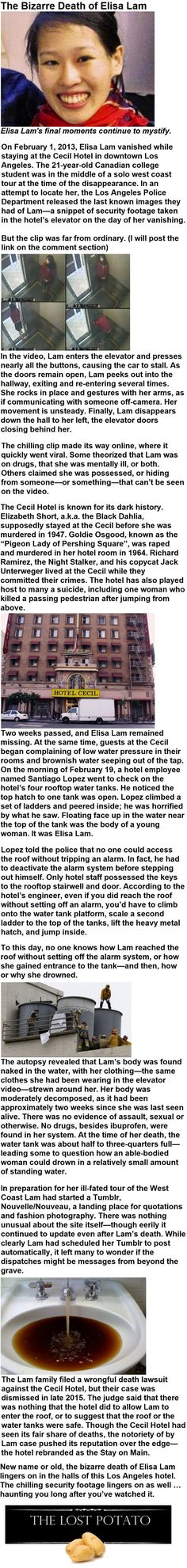The Bizarre Death of Elisa Lam - FunSubstance Paranormal Stories, Scary Stories, Paranormal Activities, Bizarre Pictures, Best Funny Pictures, Urban Legends Stories, Wtf Fun Facts, Random Facts, Random Stuff