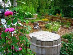 20 Norwegian Garden Ideas Plants Norwegian Garden