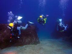 伊豆、熱海沖初島でダイビング! 中性浮力を練習中の三人娘