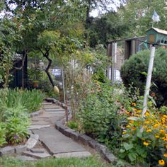 Community Gardens.  How to start a community garden or even a school garden.