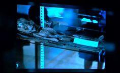 Suposta imagem real do ET de Roswell. Imagem de slide.