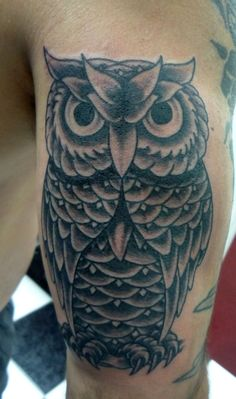 1000 ideas about traditional owl tattoos on pinterest for Coral springs tattoo