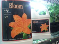 When you mix Bloom with Grow and Micro, you get 3-part base nutrients that provide bud-building potassium ad phosphorus combined with other elements to give you vigorous growth and a happier harvest day guranteed!   $6.39 for 500ml  $14.85 for 1L